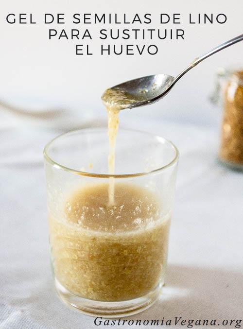 Gel de semillas de lino molidas para sustituir el huevo - GastronomiaVegana.org