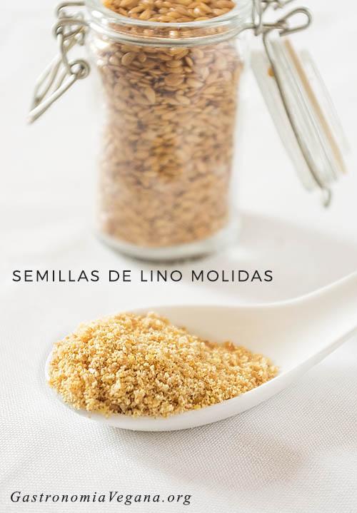 Semillas de lino molidas - GastronomiaVegana.org