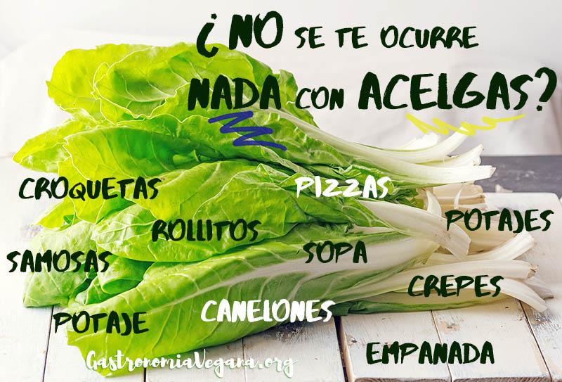 ¿No se te ocurre nada con acelgas? - Tutorial Cómo cocinar con acelgas - GastronomiaVegana.org