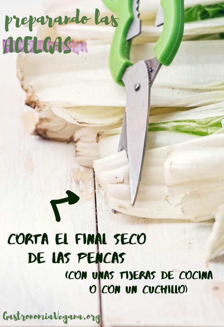 Preparar las acelgas - tutorial Cómo cocinar con acelgas - gastronomiavegana.org