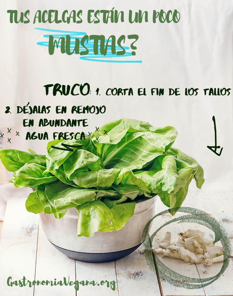 Truco para las acelgas mustias: cortar y dejar en remojo - Tutorial para cocinar con acelgas - gastronomiavegana.org