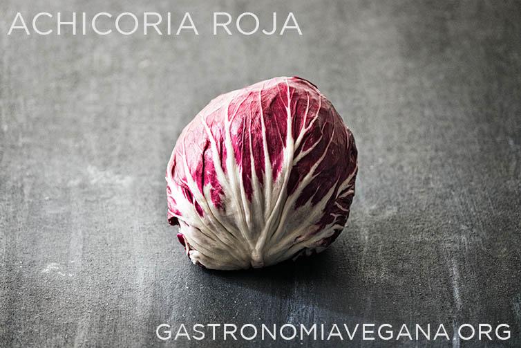 Achicoria roja - GastronomiaVegana.org