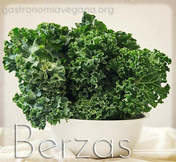 Berzas - Vegetales Fantásticos y Dónde Encontrarlos - GastronomiaVegana.org