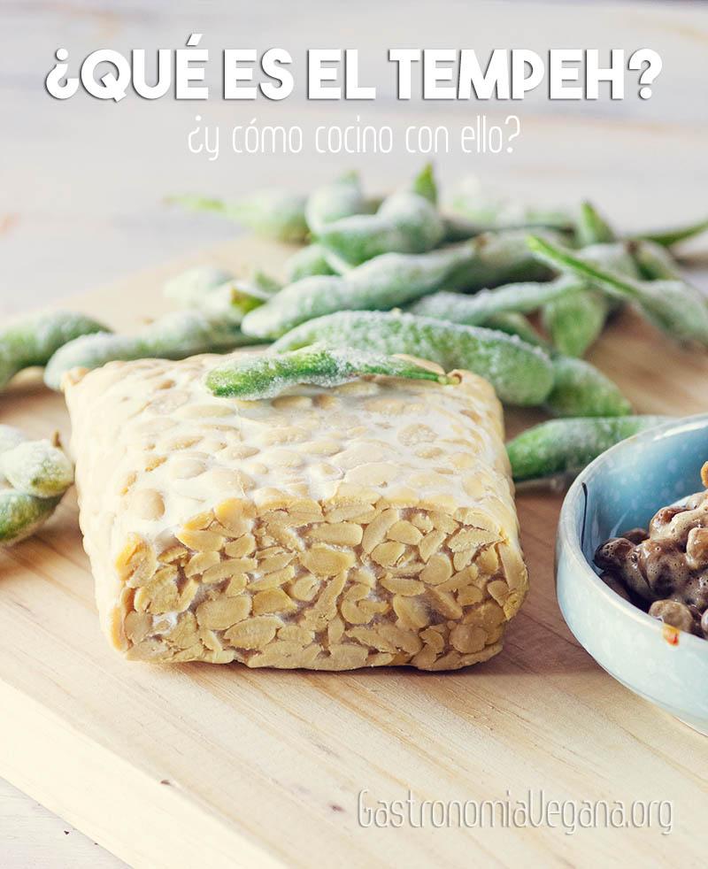 Qué es el tempeh y cómo cocinarlo - GastronomiaVegana.org